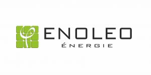 logo_enoleo